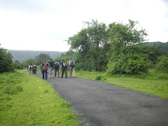 "Walking through lush green rice fields on way to ""Sagargad Hill"" base."