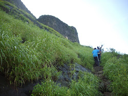 "Trekking through elephant grass to ""Shreevardhan Fort"".(Sunday 19-9-2010)."