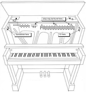 Finding a Serial Number on the Piano