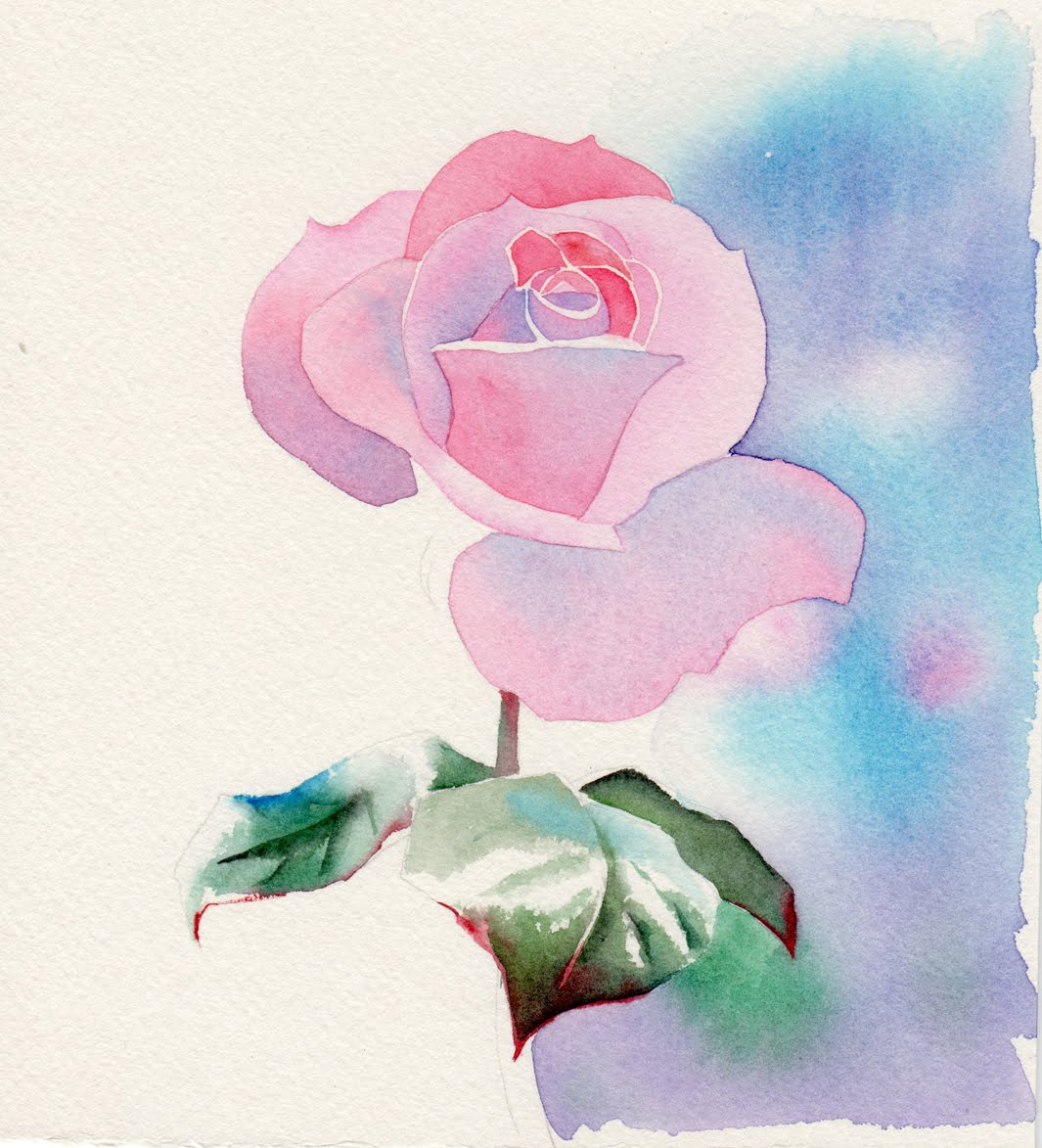 Barbara fox studio perfectly pink watercolor painting for How to paint a rose watercolor