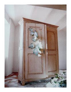 armadio patinato, Luigi XVI,