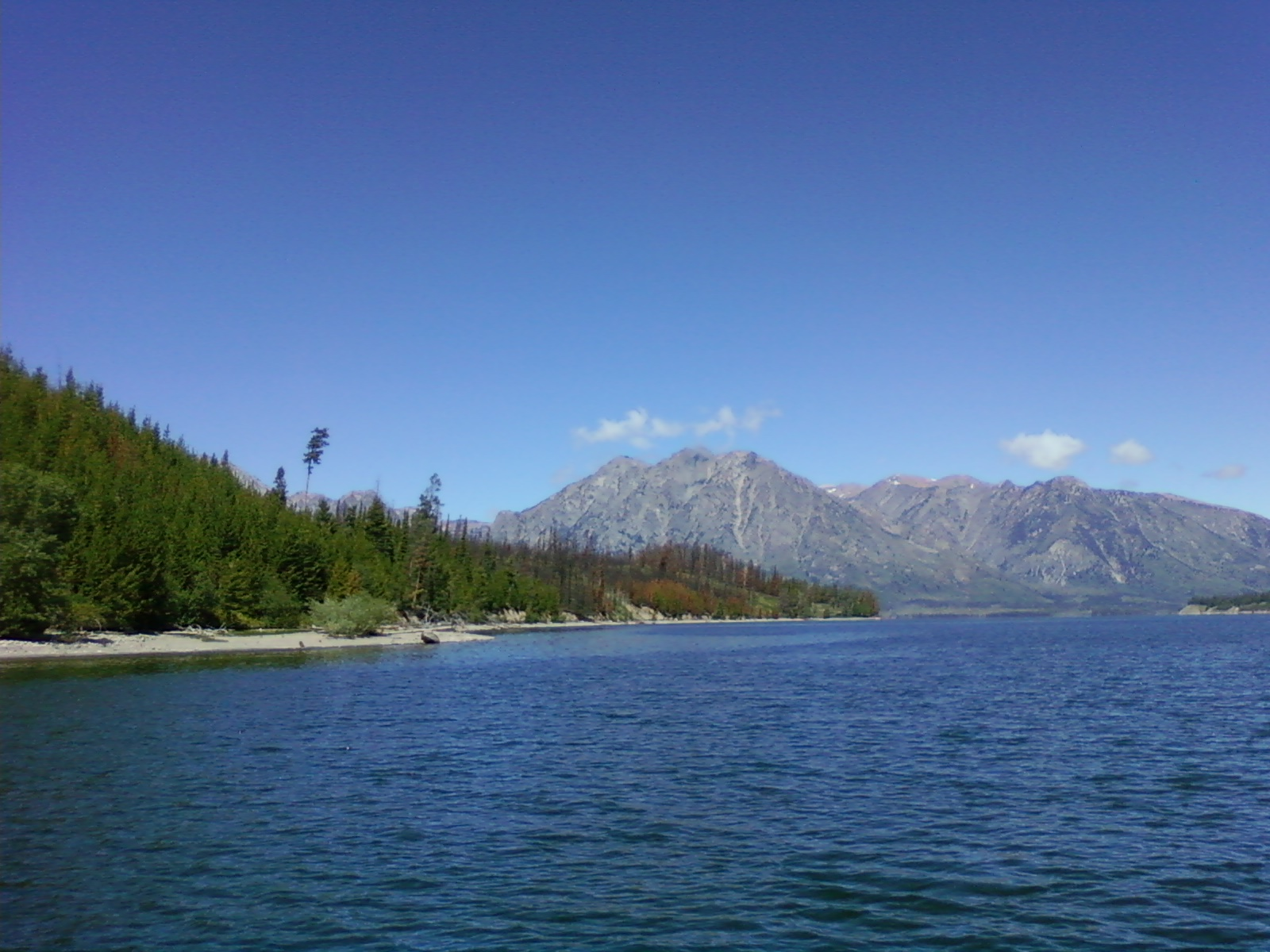 Fishing report teton national park and st anthony for Jackson lake fishing report
