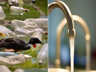 Tap water bottled water