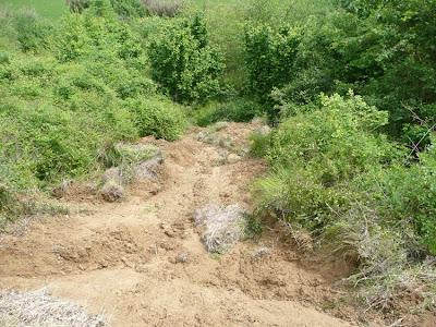 Frana argine terreno argilloso