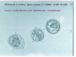 2nd Fresh IVF 5 day transfer 2/1/08