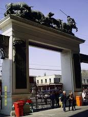La Monumental Plaza de Toros México
