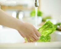 Higienização das Verduras