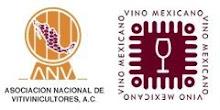 Los Vinos de México