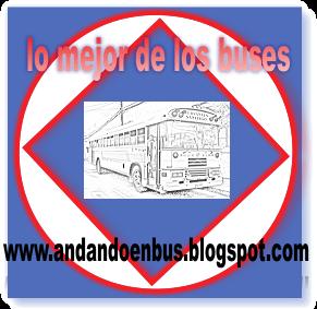ANDANDO EN BUS