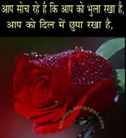 Express yourself wirh funny, philosopjical, sad Shayaris. Shayari for love, friendship and romance.