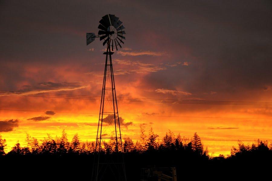 BOYS FARM: October skies and 3 Boys Farm