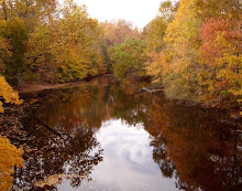Fall Mill Pond