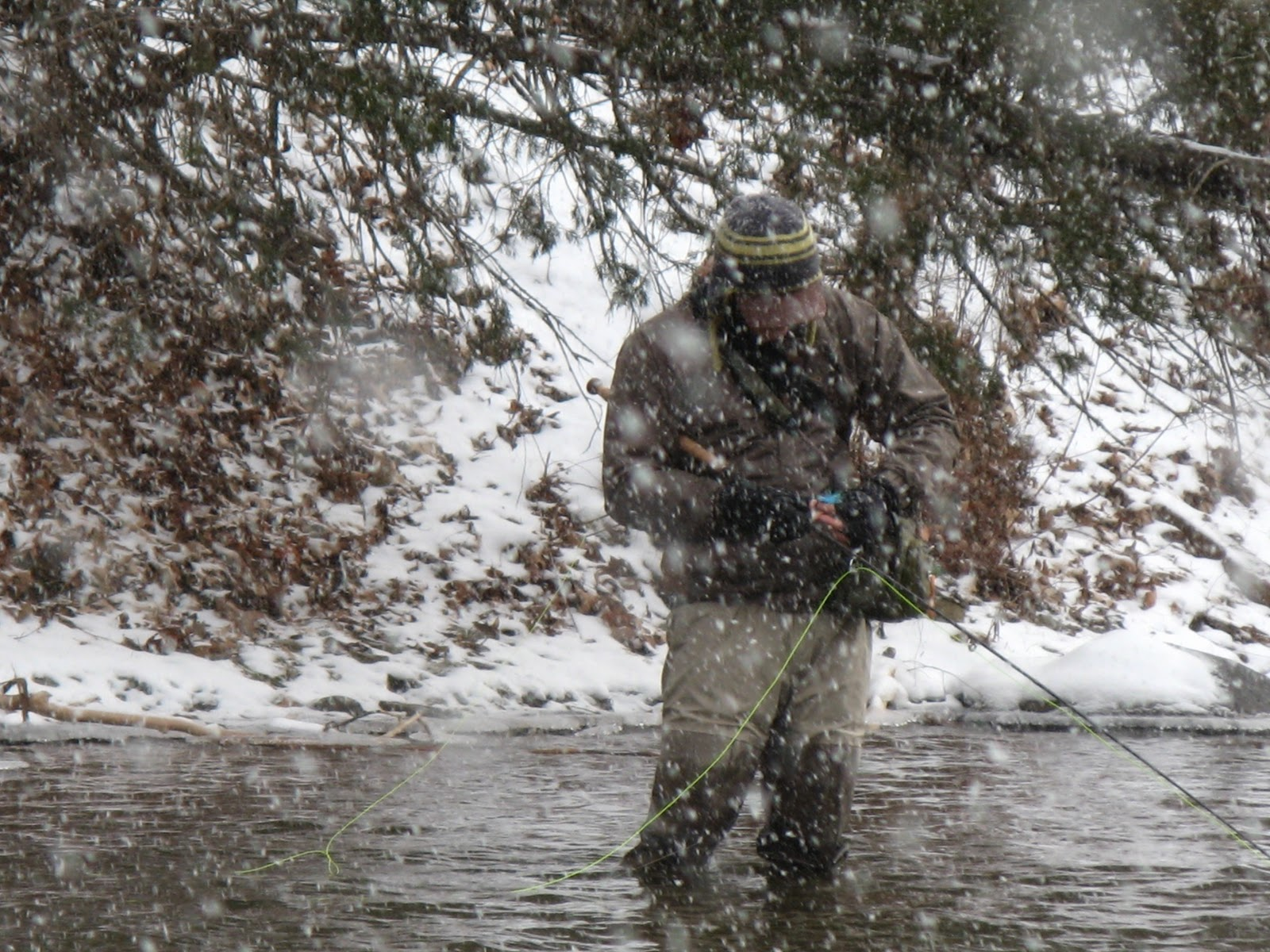 Wny fly fishing wny fly fishing report 01 8 11 for Oak orchard fishing report