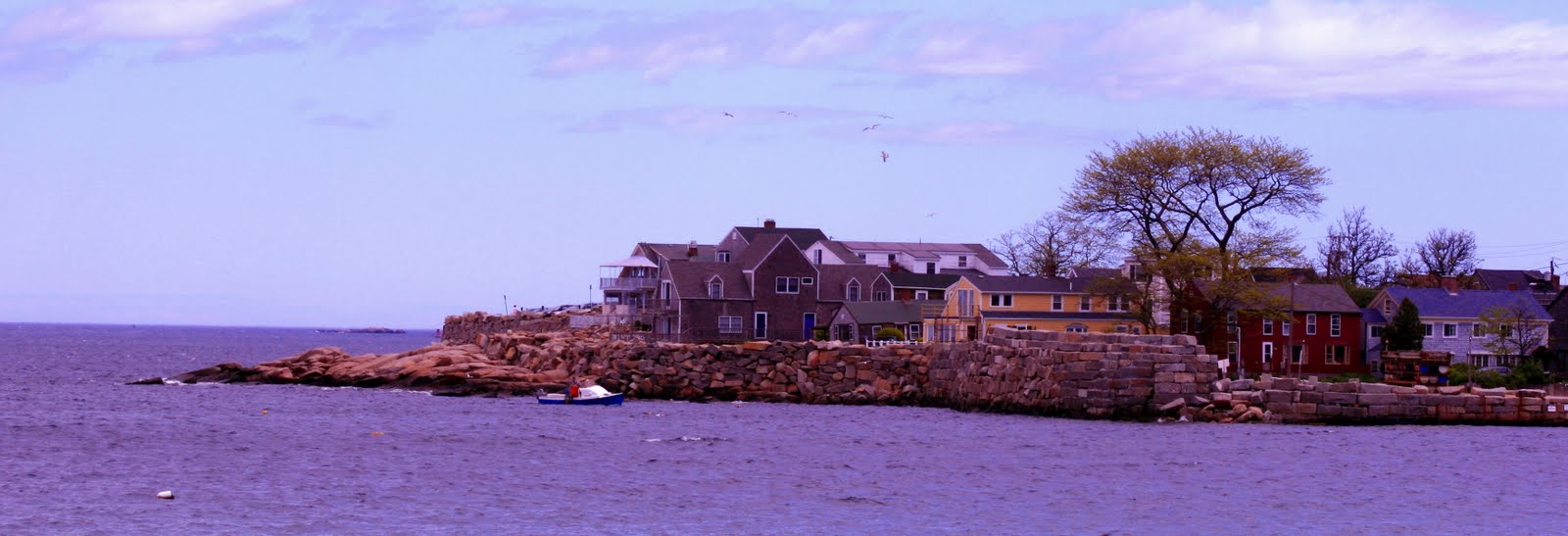 Here are some pics that I took on Cape Ann this weekend...