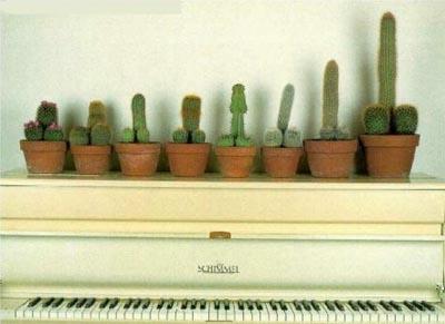 [piano.jpg]