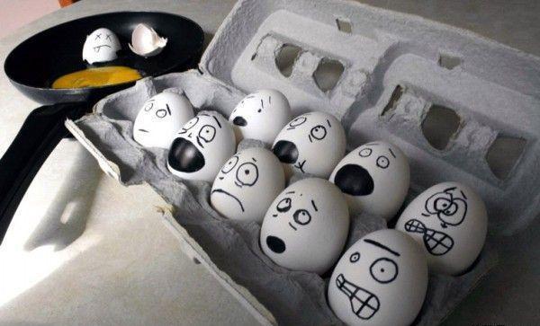 [ovos-assustados.jpg]