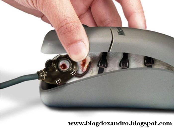 [mouse-por-dentro.jpg]