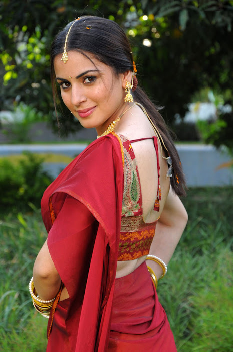 shraddha arya in half saree actress pics