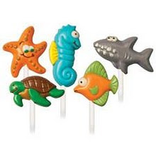 Ocean Wild Design Lollipop Choc