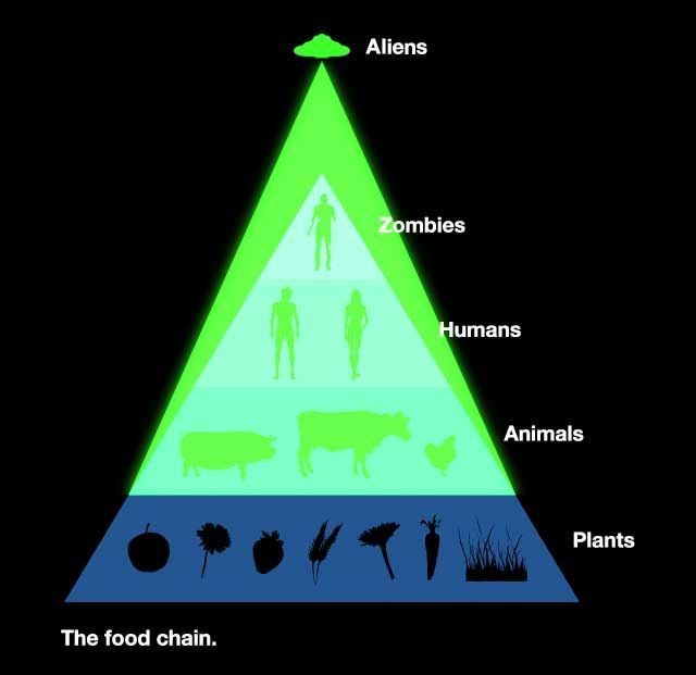 The True Food Chain. Posted by Geoff at 10:09 PM 0 comments. Labels: Zombies