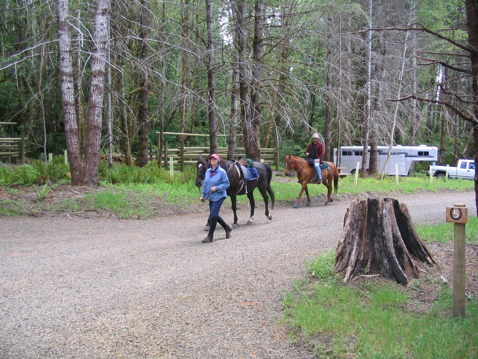 Astoria Oregon Rust: Horse Camp