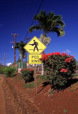 Pedestrian crossing, Paia, Maui, July 4, 2008