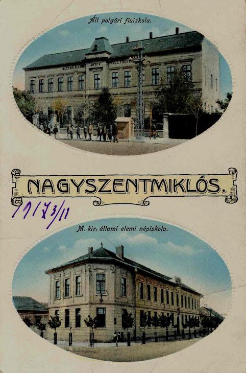 Gimnaziul Berta si statuia lui Revai Miklos