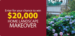 picture of home landscape makeover graphic