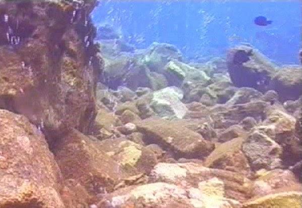 Wisata Ke Gunung Api Bawah Laut, Pulau Mangahetang