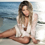 Beautiful Shakira Hot Bikini Images