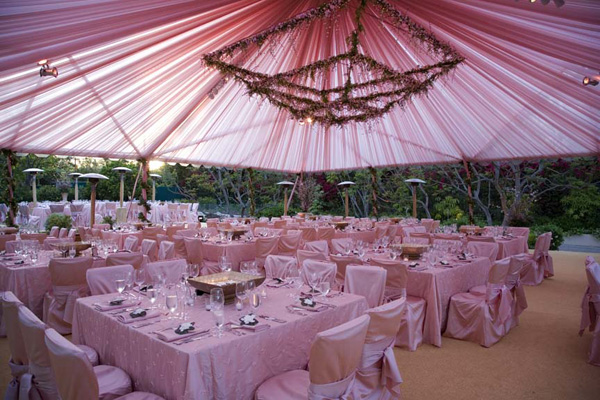 Wedding tent decorations wedding decorations for Outdoor party tent decorating ideas