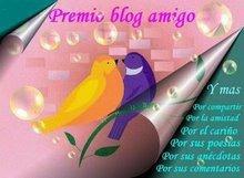 "Premio ""Blogg Amigo"""