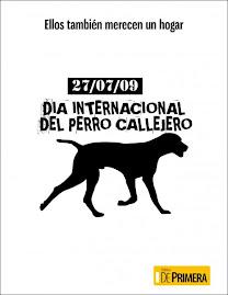 Día Internacional del Perro Callejero