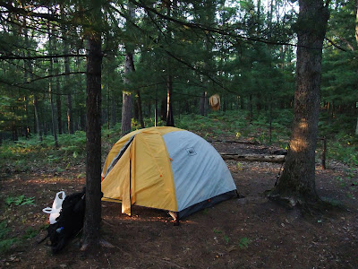 camping tent in michigan, manistee forest