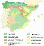 Vegetación española