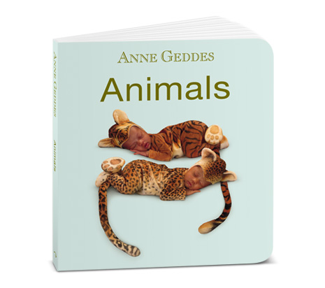 Anne Geddes Board Book And Baby Bunny Plush Giveaway Closed