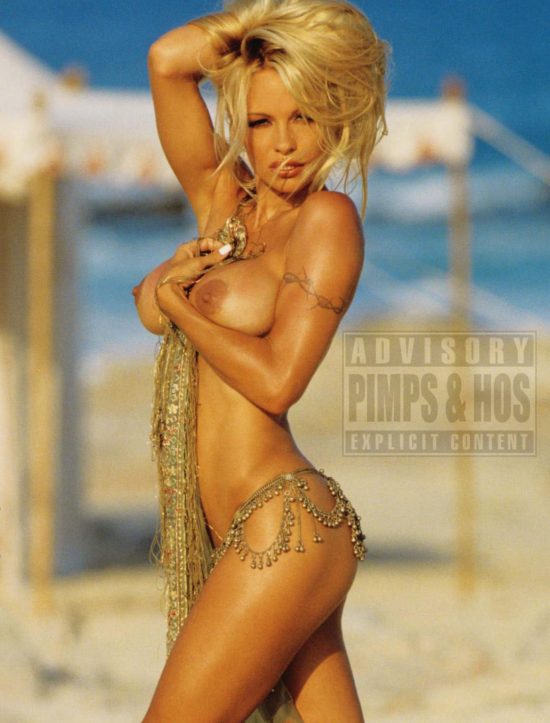 nude videos of pamela anderson