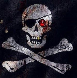 Pirátství - důsledky a budoucnost