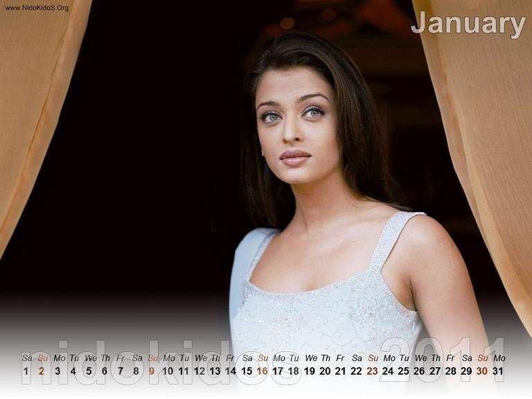 New Year 2011 Calendar February 2011
