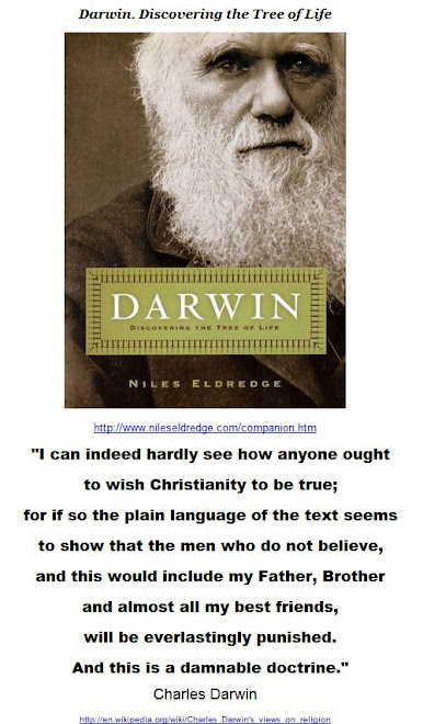 I can indeed hardly see how anyone ought to wish Christianity to be true