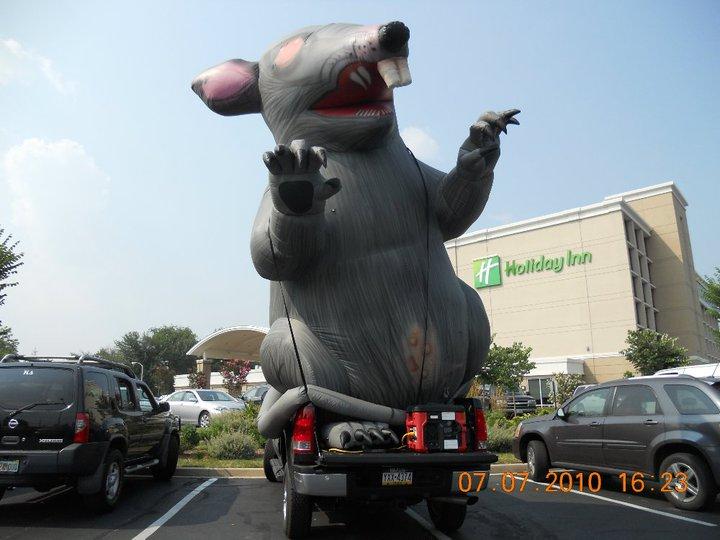 Maryland Politics Watch  Mcgeo Rat Rips Raiding Rival
