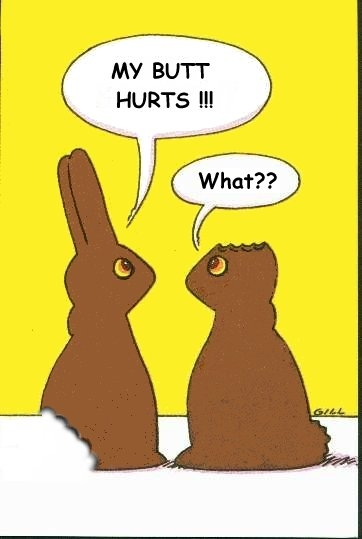 happy easter bunnies. happy easter funny images