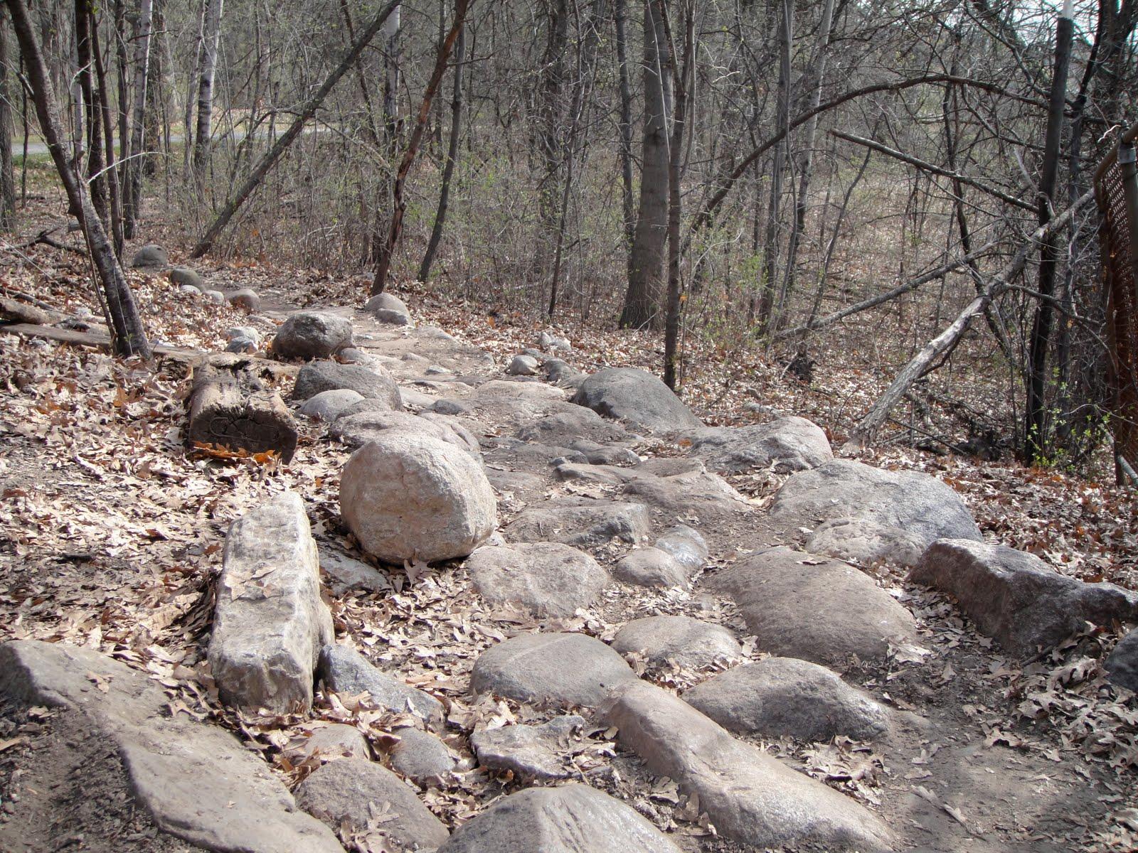 Mountain Bike Trail Profile: Theodore Wirth Park, Minneapolis, MN