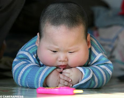 fat babies wallpapers. sweet Fat Babies