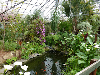 In the Temperate Zone at Myerscough College Plant World