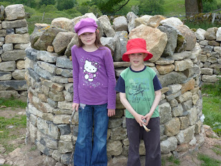 Dry-stone wishing well and walling by New House (Holly & Chris)