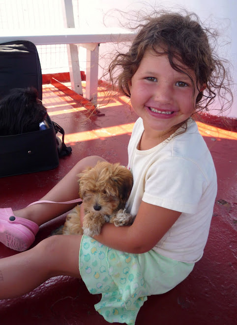 DO HAVANESE GET ALONG WITH CHILDREN?
