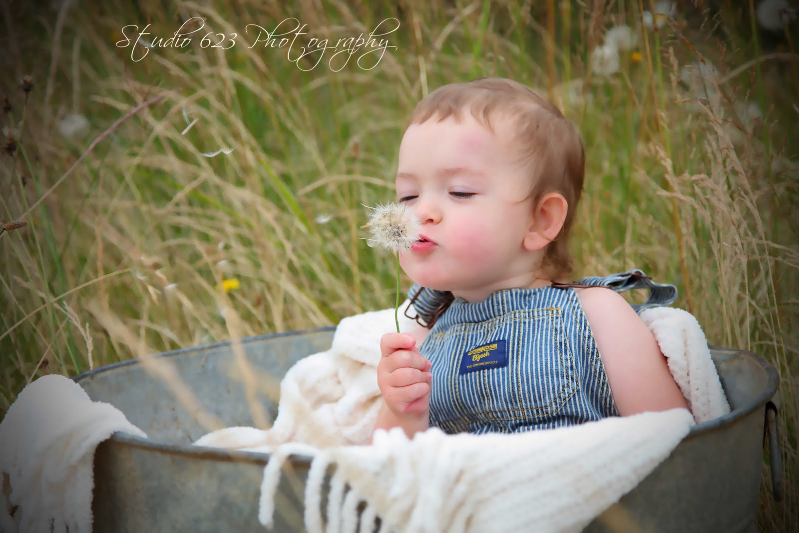 it's summertime baby! » studio 623 photography