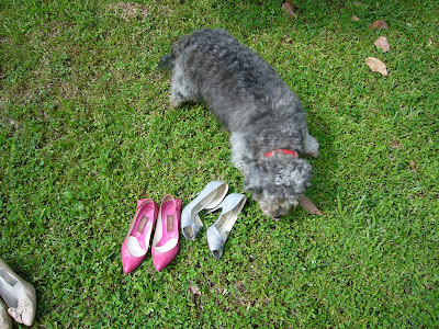 vintage shoes @ máriel's castle