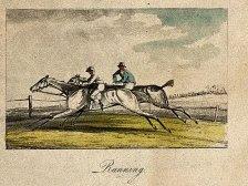 1817 running horse